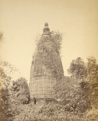 [Unidentified temple in Faridpur District?]